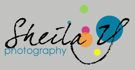 Sheila Y Photography logo